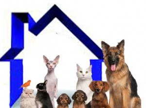 Renting To Tenants With Pets